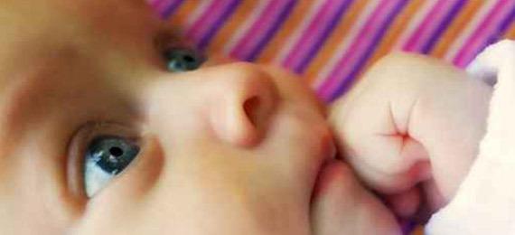 mouche bébé